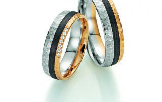 Fischer Carbon Ringe