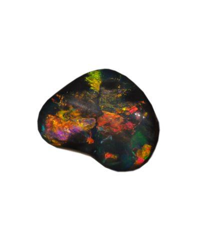 Opal Wochenende Ausstellung & Vortrag